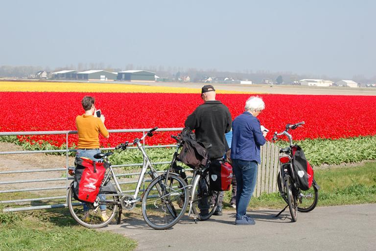 Viaggi In Bicicletta Ad Anello In Olanda Dutch Biketours